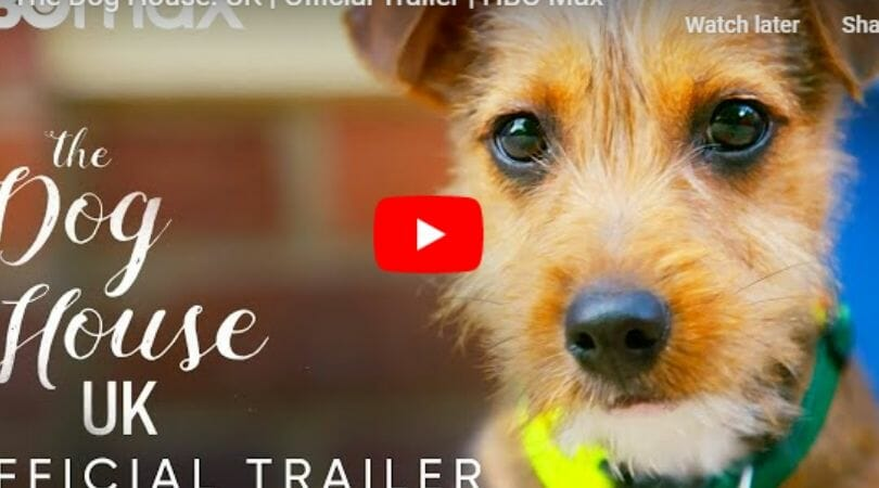 The Dog House trailer