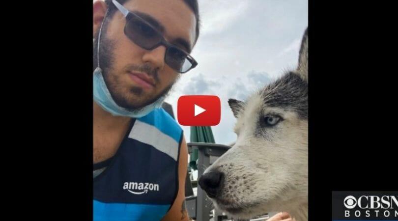 Amazon driver and dog