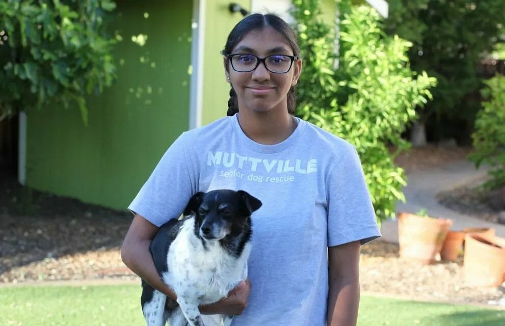 Adopted 14-Year-Old Girl Helps Shelter Dogs Find Loving Families of Their Own