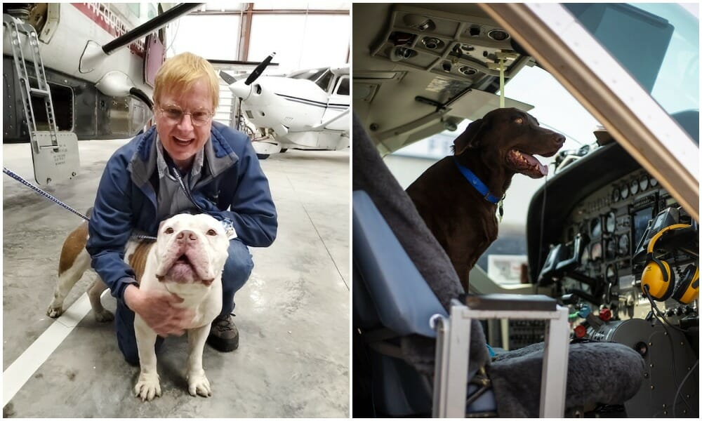 This Doctor-Turned-Pilot Has Flown 15,000 Shelter Pets to Find Forever Homes