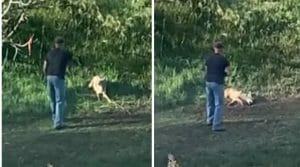 man shooting coyote