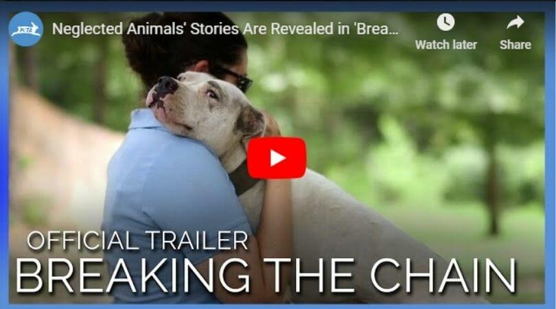 human and dog embracing