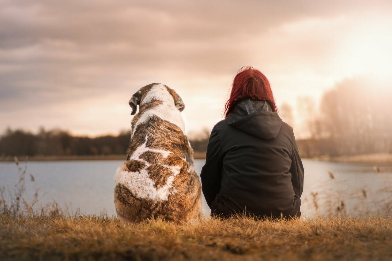 dog and woman