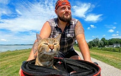 cat and human with bicycle