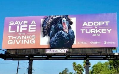 Adopt a Turkey billboard
