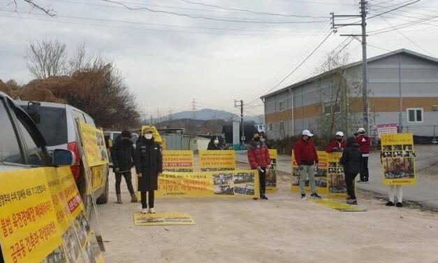 UPDATE: LFT Partners Protest Outside Cruel S. Korean Dog Meat Auction
