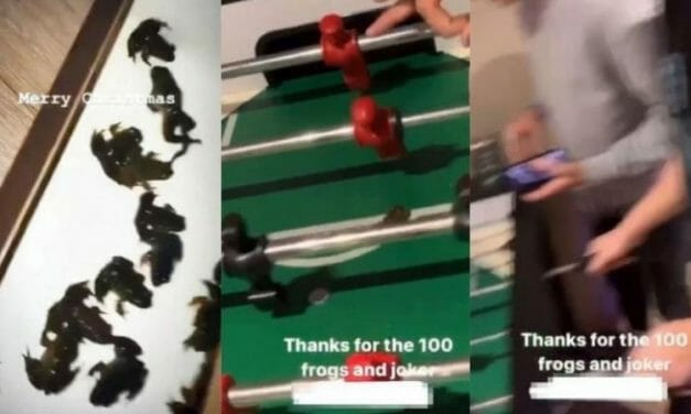 SIGN: Justice for Frogs Used as Living Foosball Targets