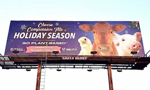 New Billboard Asks You to Choose Compassion This Holiday Season