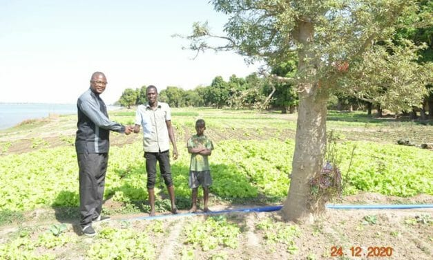 UPDATE: Former Dog Dealers in Mali Thrive In More Compassionate, Crop-Based Careers