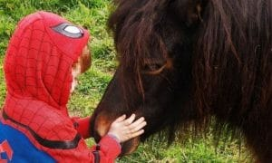 boy and pony