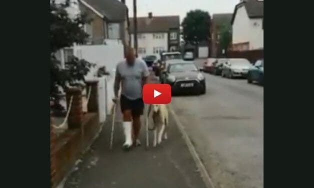 VIDEO: Injured Man Takes Limping Dog to Vet Only to Find Out His Pet Is Copying Him