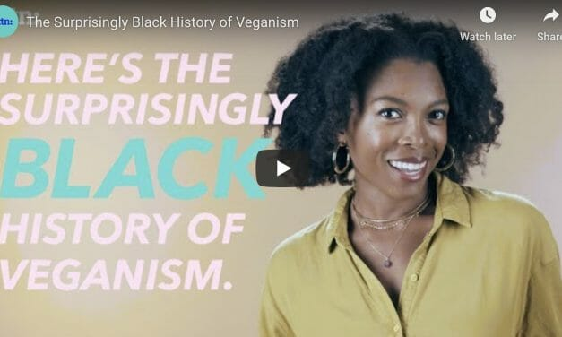 VIDEO: Chef Jenné Claiborne Explains the 'Surprisingly Black History of Veganism'