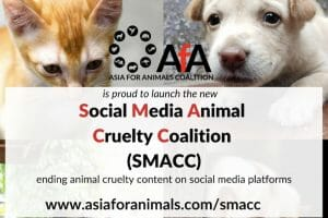 New Coalition Launched To #SMACC Animal Cruelty Off Social Media
