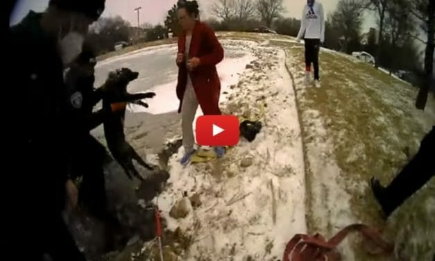 VIDEO: Dog Clinging to Sheet of Ice Rescued by Brave Officers
