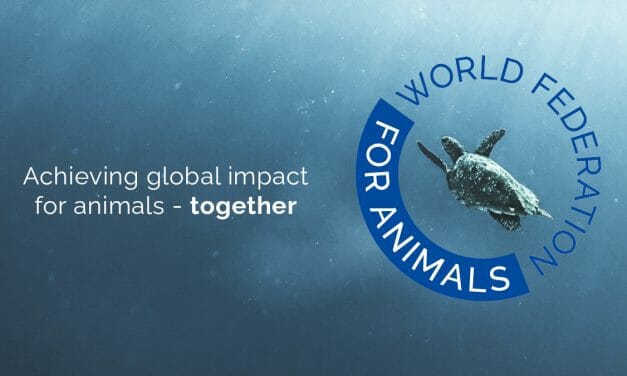 New Federation Will Give Animals A Voice At UN Forums