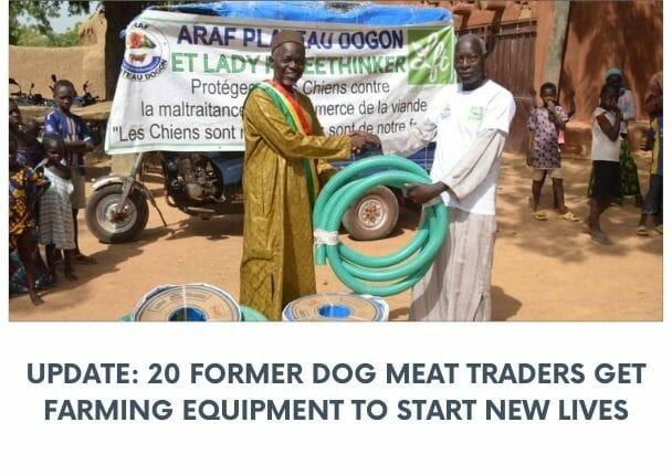 dog meat mali