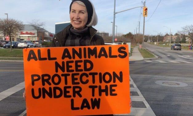 Thousands Demand Justice for Vegan Activist Killed During Slaughterhouse Protest