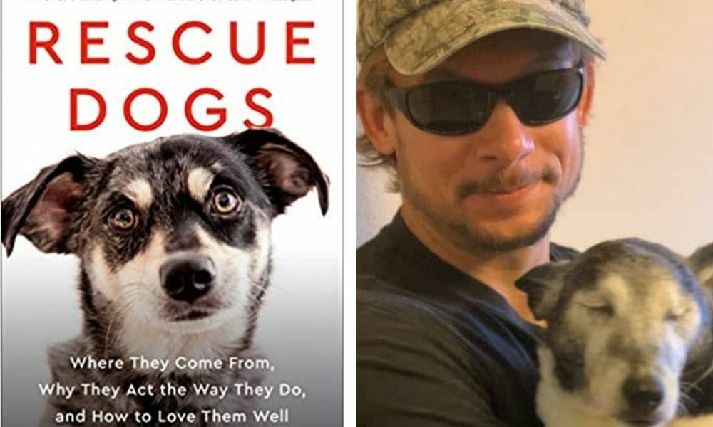 Recommended Reading: 'Rescue Dogs' by Pete Paxton