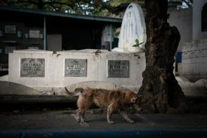 Pasay Cemetery