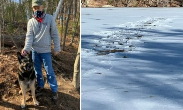 Hero Dog Helps Save Man Who Fell Through Ice In Frozen Pond