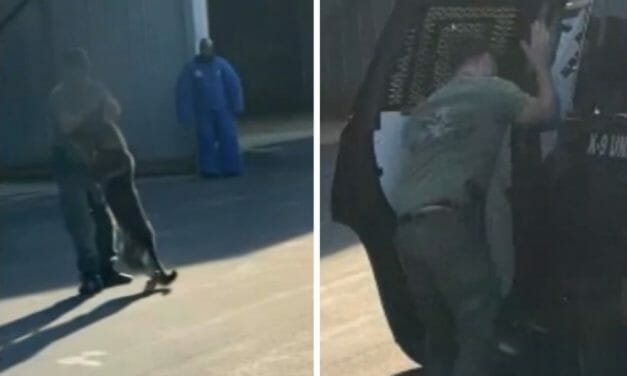 UPDATE: Officer Who Slammed K-9 Into SUV Has RESIGNED
