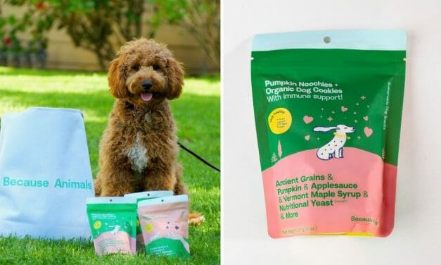New Cruelty-Free 'Pumpkin Noochies' Dog Snack Combines Ancient Grains and Other Plant-Based Goodness