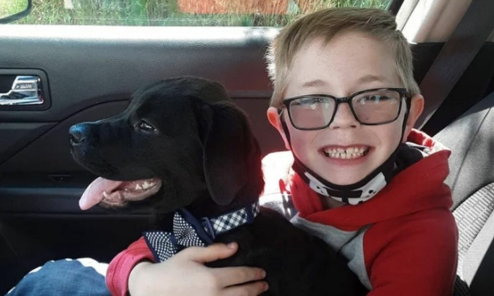 Boy Who Sold Pokémon Collection to Pay for Pup's Medical Treatment Gets Incredible Surprise