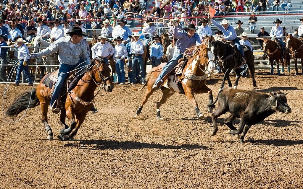 Disney Cancels Plan for Live-Action Rodeo Film After Mounting Pressure From Activists