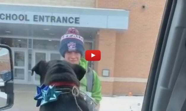 VIDEO: A Boy and His Dog Have Heartwarming, Tear-Filled Reunion After a Year Apart