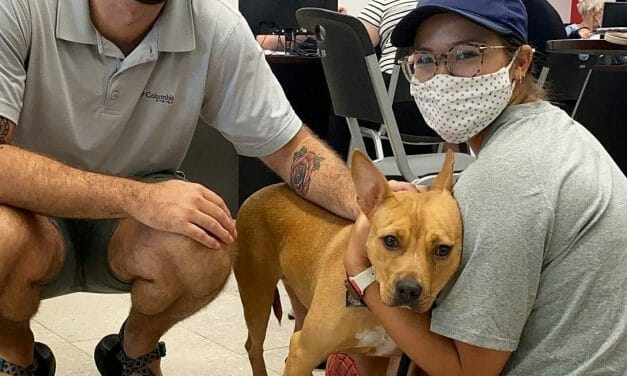 Kittens and Puppies Saved from Hurricane Ida Arrive Safely to Shelters Nationwide