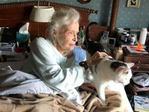 Elderly woman pets senior cat.