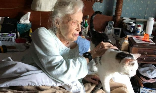Gus, Oldest Cat at the Shelter, Adopted by 101-Year-Old Woman and Her Family