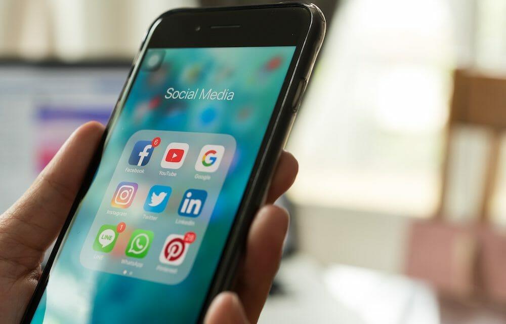 How to Report Animal Abuse on Social Media [YouTube, Facebook, Instagram, TikTok]