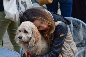 Dog and sad girl