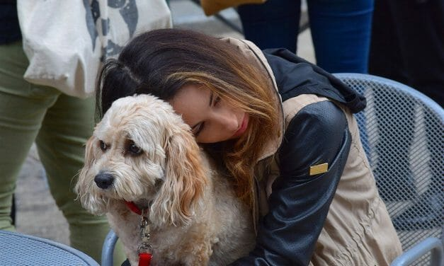 People's Emotions Are 'Contagious' to Dogs, New Studies Suggests